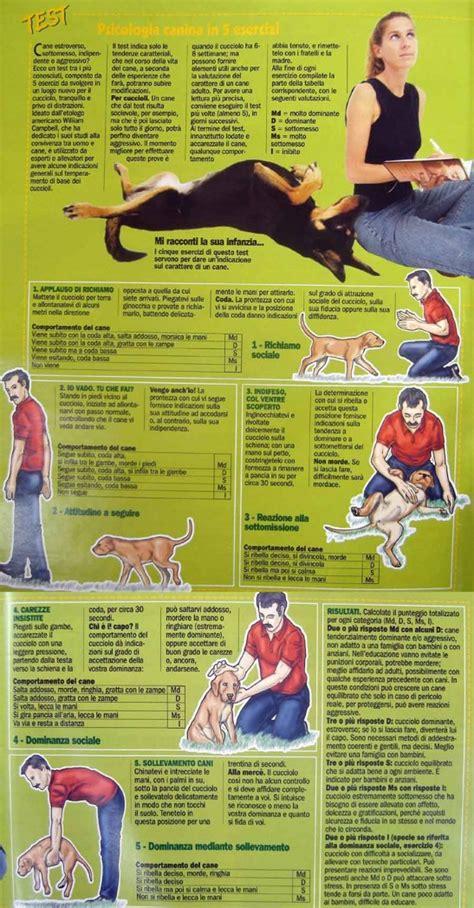 test sul carattere testare il carattere cucciolo test di cbell