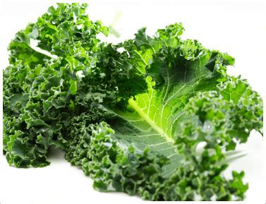 vegetables kale kale a vegetable packed with vitamins for