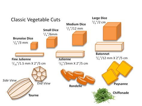 cuts of vegetables diagrams knife skills the culinary pro