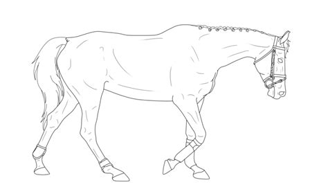 free lineart to use walking horse by only blue27 on