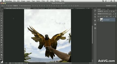 download photoshop cs6 full version windows xp adobe photoshop cs6 free download windows 7