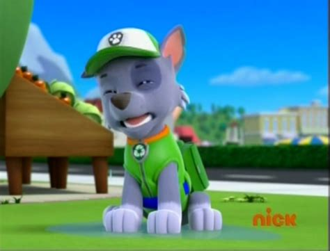 paw patrol breeds paw patrol images rocky the mixed breed wallpaper and background photos 40126960