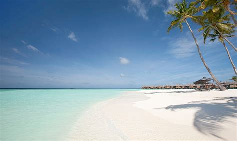 best reads 2014 best reads 2014 constance hotels and resorts