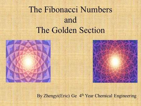 fibonacci numbers and the golden section discovering fibonacci ppt download