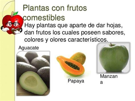 imagenes de flores que dan frutos las partes de la planta que comemos