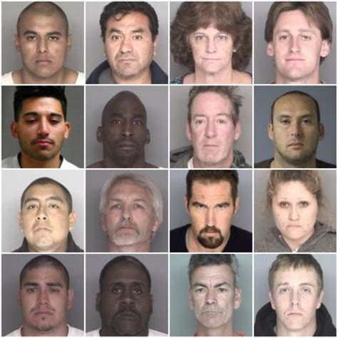 Arrest Records Santa Barbara Ca 17 Arrested In Santa Barbara County Compliance Sweep