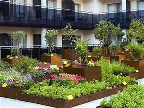 orti da terrazzo piante da terrazzo giardinaggio