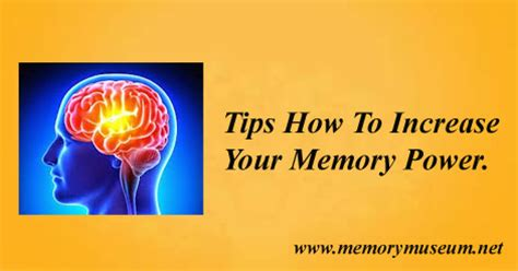 memory the powerful guide to improve memory memory tips memory techniques unlimited memory memory improvement for success books home remedies to increase memory power www memorymuseum net