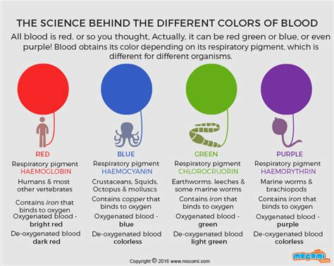 blood colors what colour is blood gifographic for mocomi