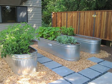 Galvanized Water Trough Planter by Galvanized Water Trough Planters Nifty Homestead