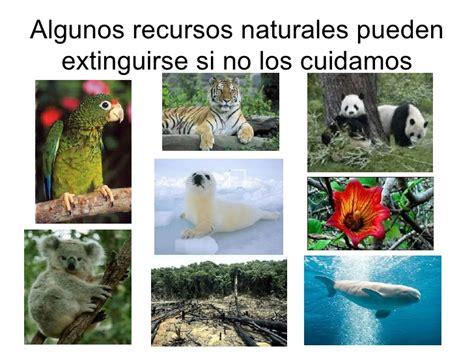 imagenes de recursos naturales vivos recursos naturales