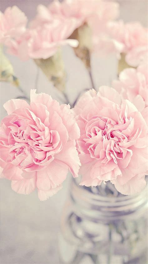 pretty backgrounds for iphone pretty pink flowers pastel wallpaper iphone background