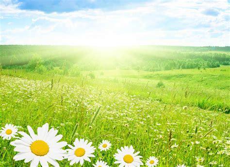 imagenes bidimensionales naturales imagenes de hermosos paisajes naturales paisajes y