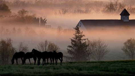 landscape pictures view images of kentucky