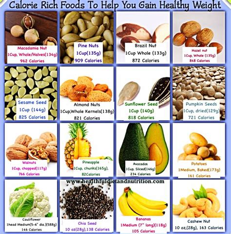 food the best nutrition for your four legged friend books best 25 high calorie foods ideas on
