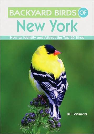 backyard bird shop coupons backyard birds of new york how to identify and attract
