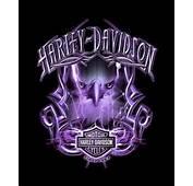 Pin By Robin Clark On Harley Davidson  Biker Genre No