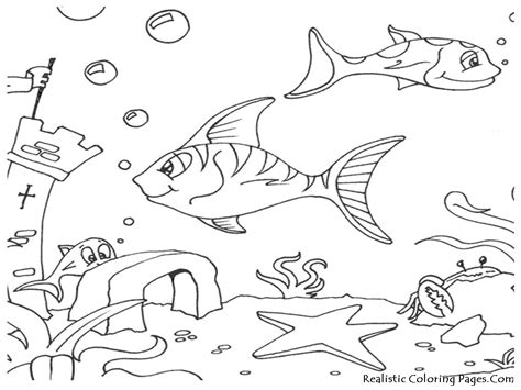 ocean animal coloring pages