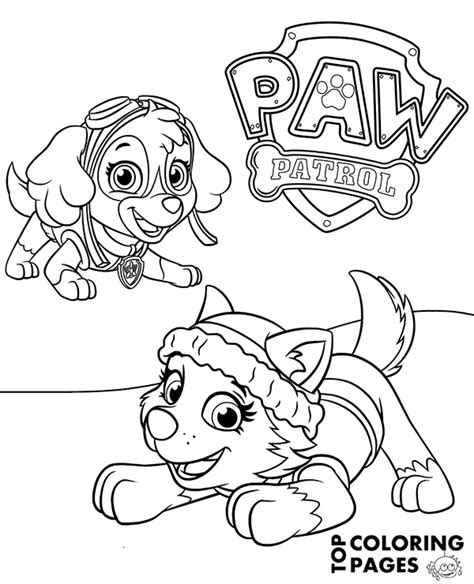 paw patrol spring coloring pages everest and skye on printable paw patrol coloring page
