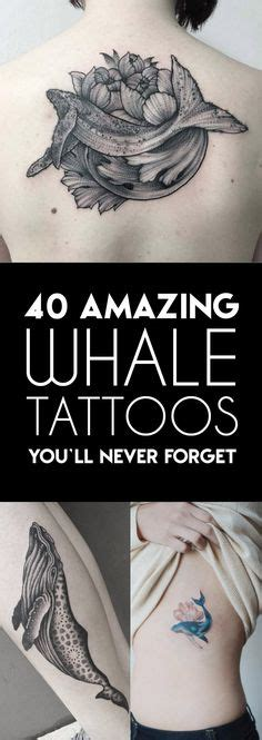 1000 ideas about whale tattoos on