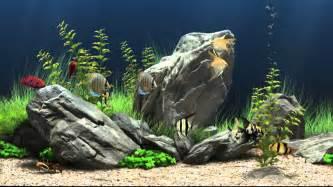 dream aquarium virtual fishtank 1 youtube