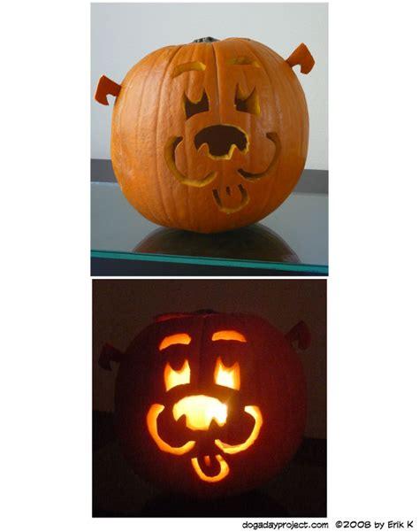 pumpkin and dogs october 31 pumpkin a a day