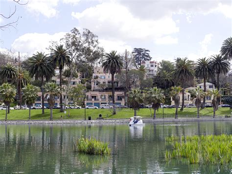 swan boats in echo park echo park lake an oasis in la with swan boats canoes
