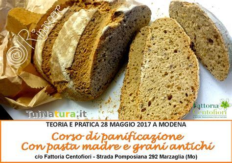 di grani antichi e pane con pasta madre eventi passati