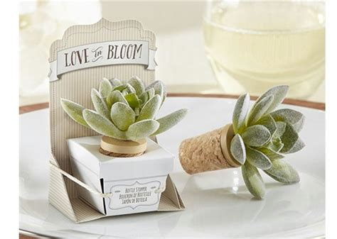 DIY Succulent Wedding Favors  Wedding Favor Discount Blog