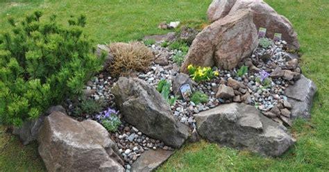 piante perenni per giardino roccioso squarciomomo cambiamenti nel giardino roccioso