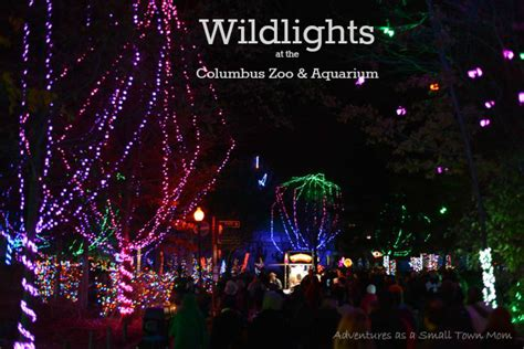 zoo lights prices local travel columbus zoo and aquarium holidays and