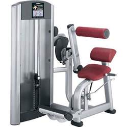 back extensions machine fitness signature series back extension machine