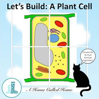 lets build  plant cell   house called home tpt