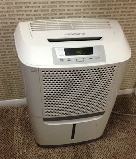 top dehumidifiers for preventing mold