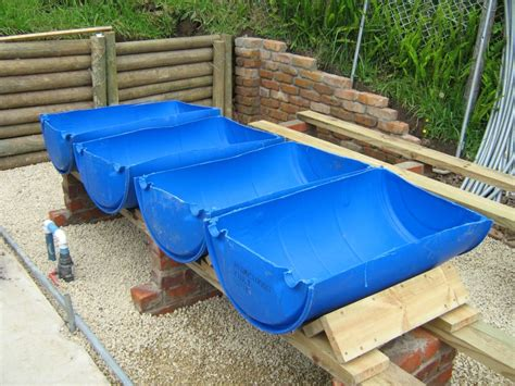 diy backyard aquaponics
