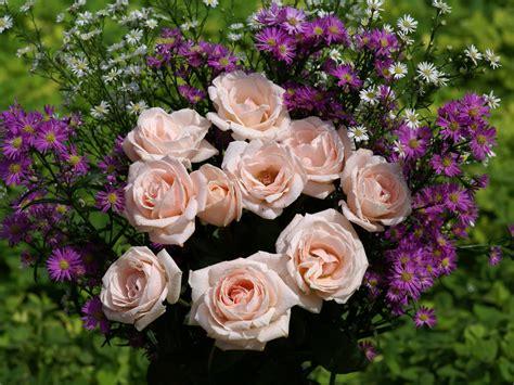 imagenes rosas bellas image gallery las rosas mas bonitas