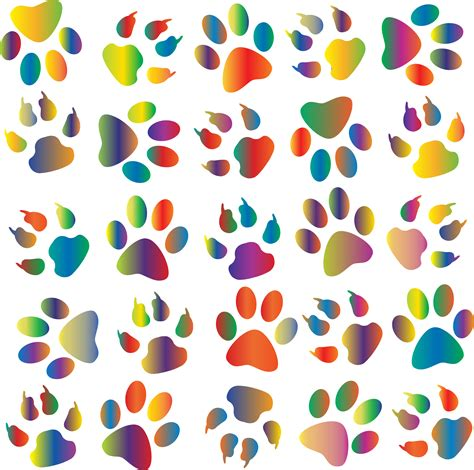 Clipart Colorful Paw Prints Pattern Background Colorful Prints