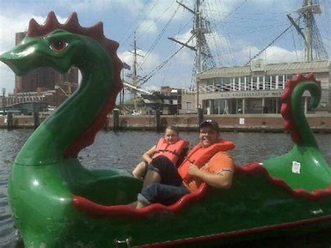 paddle boats baltimore md n8 k8 inner harbor dragon paddle boats picture of