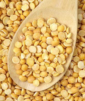 protein yellow yellow split pea protein powder the new protein power