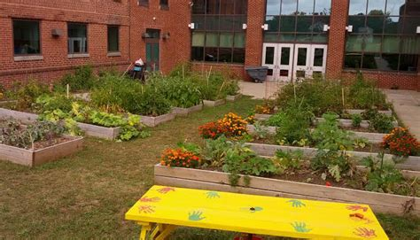 Education World: School Gardens for Beginners: Advice From