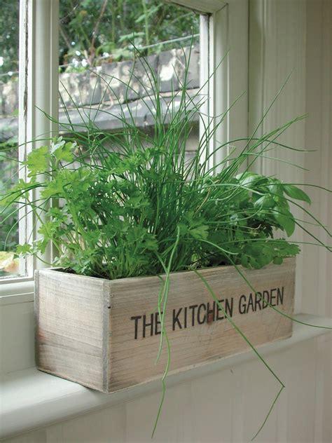 indoor wooden window herb garden kitchen trough box