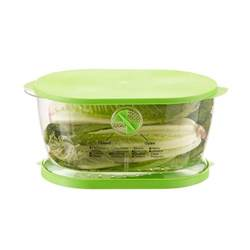 lettuce storage container lettuce produce keeper the container store