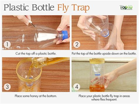 how to get rid of flies in your backyard how to get rid of flies in your house houseflies top 10 home remedies