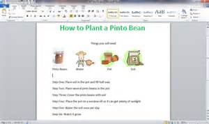 how to plant a pinto bean diy