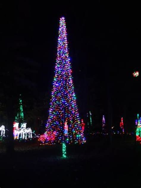 Christmas Lights Picture Of Garvan Woodland Gardens Hot Garvan Gardens Lights