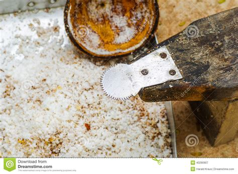 Coconut Grater Stool by Coconut Grater Stock Photo Image 40290907