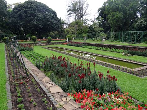 The Botanical Garden Throwbackthursday Durban S Oldest Institution 5