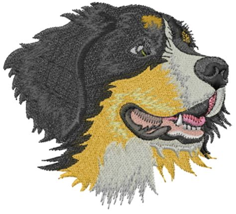 embroidery design dog bernese mountain dog embroidery design annthegran