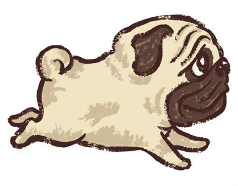 pug running gif pug on behance