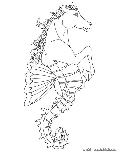 1000 Images About Hippoc On Pinterest Seahorses Myth Coloring Pages